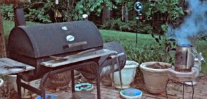 Reston Food Blog - Grilling in the Woods of Reston
