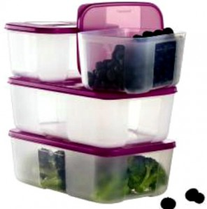 Reston Food Blog - Tupperware Freezer Smart