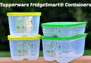 Reston Food Blog - Tupperware FridgeSmart