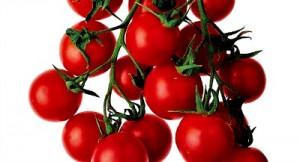 Reston Food Blog - Salsa Tomatoes