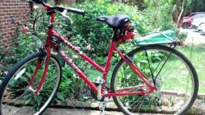 Reston Food Blog - Bicycle