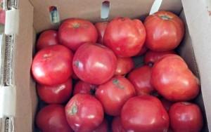 Reston Food Blog - Farmers Market Couponing