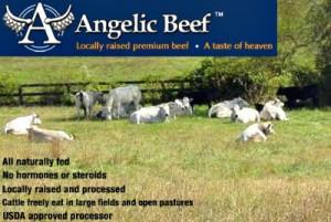 Reston Food Blog - Angelic Beef